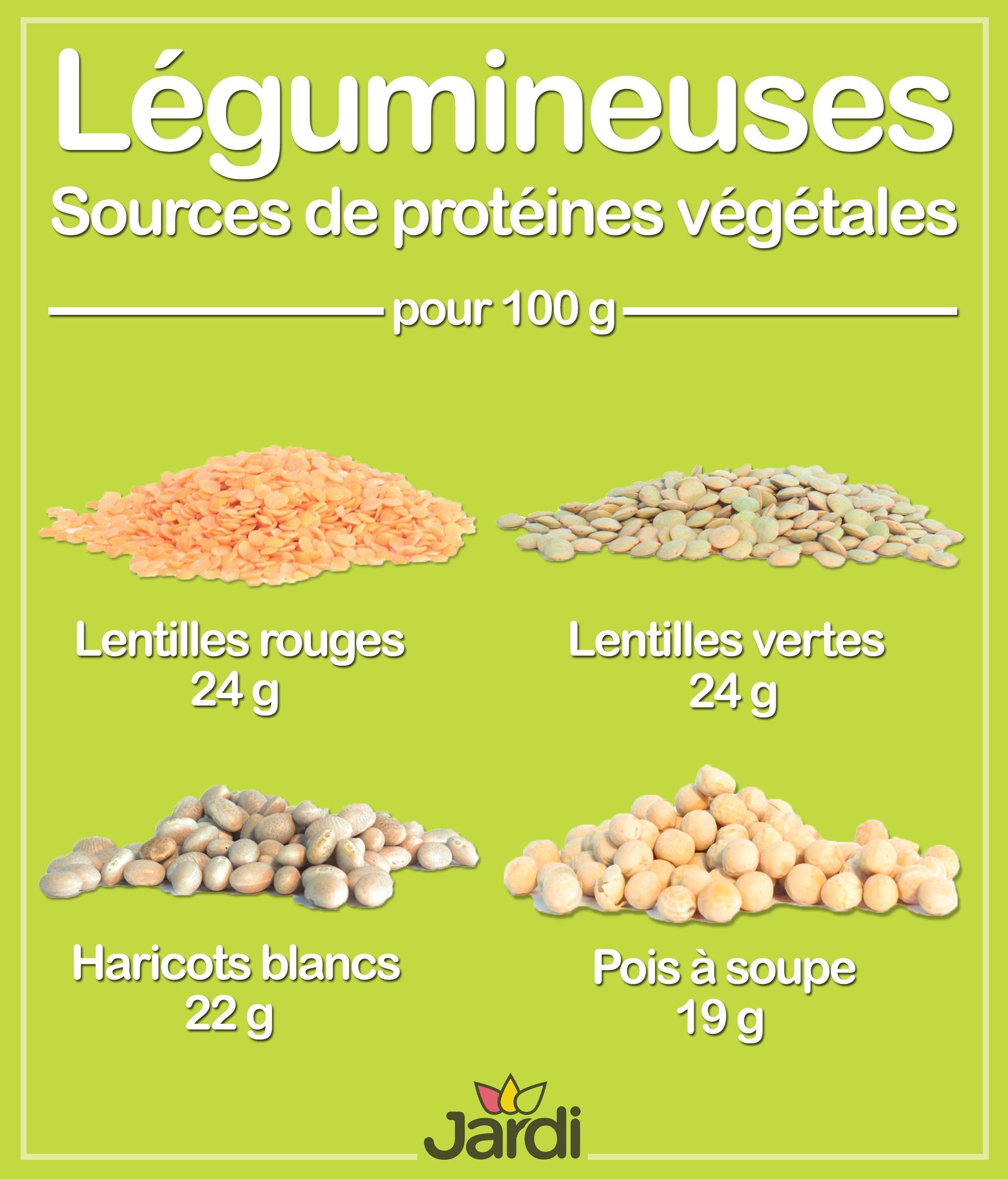 Découvrir les légumineuses - Les Aliments Jardi